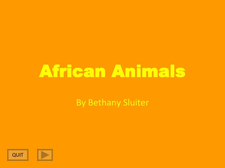 African Animals By Bethany Sluiter QUIT