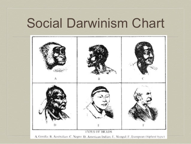 the social darwinism and the development of the humanity The study and recording of humanity  remembered for his failed ideas about social darwinism or  was an influential person in the development of sociology.