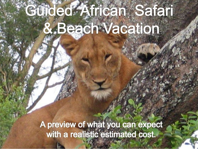 Day 8 – From Safari to Beach  .
