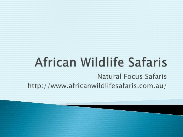 Natural Focus Safarishttp://www.africanwildlifesafaris.com.au/