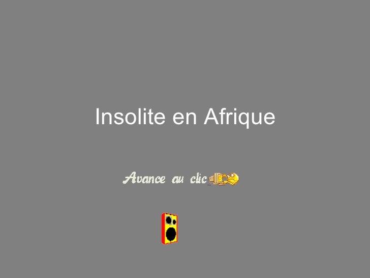 Insolite en  Afri que