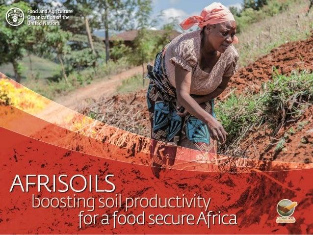 Prof Victor O. Chude Chair, African Soil Partnership (AfSP)