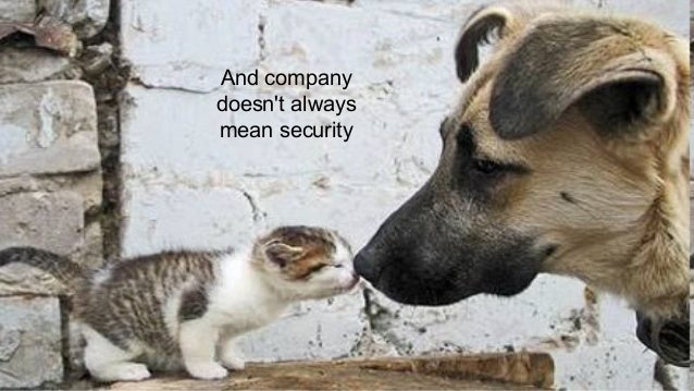 And company doesn't always mean security