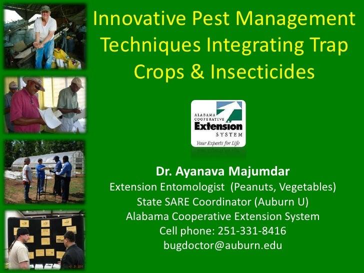 Innovative Pest Management Techniques Integrating Trap Crops & Insecticides<br />Dr. Ayanava Majumdar<br />Extension Entom...