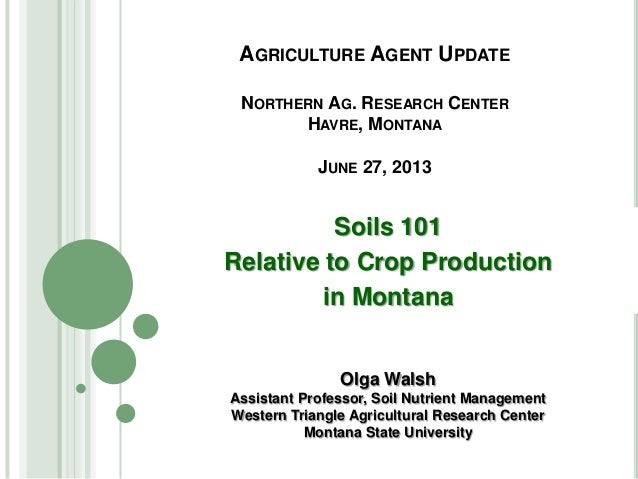 AGRICULTURE AGENT UPDATE NORTHERN AG. RESEARCH CENTER HAVRE, MONTANA JUNE 27, 2013 Soils 101 Relative to Crop Production i...