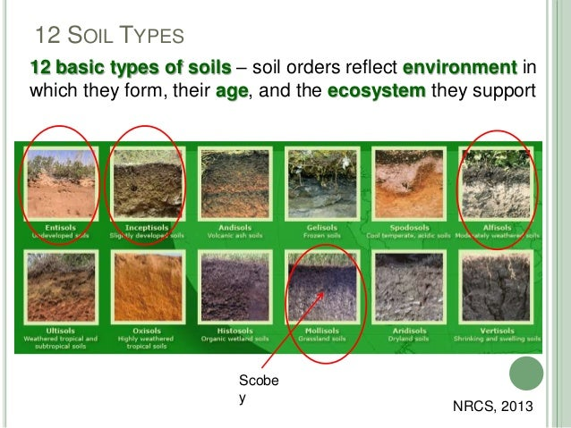 Ag agent update for Different types of soil and their characteristics