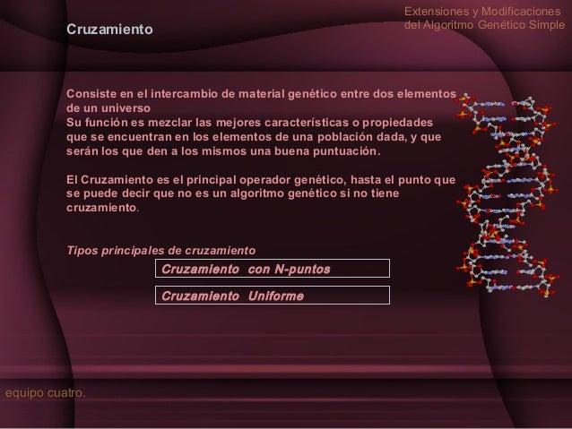 Extensiones y Modificaciones del Algoritmo Genético Simple  Cruzamiento  Consiste en el intercambio de material genético e...