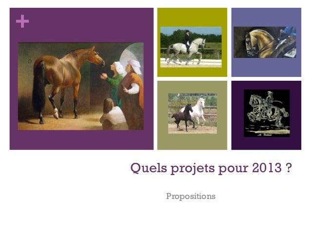+    Quels projets pour 2013 ?         Propositions