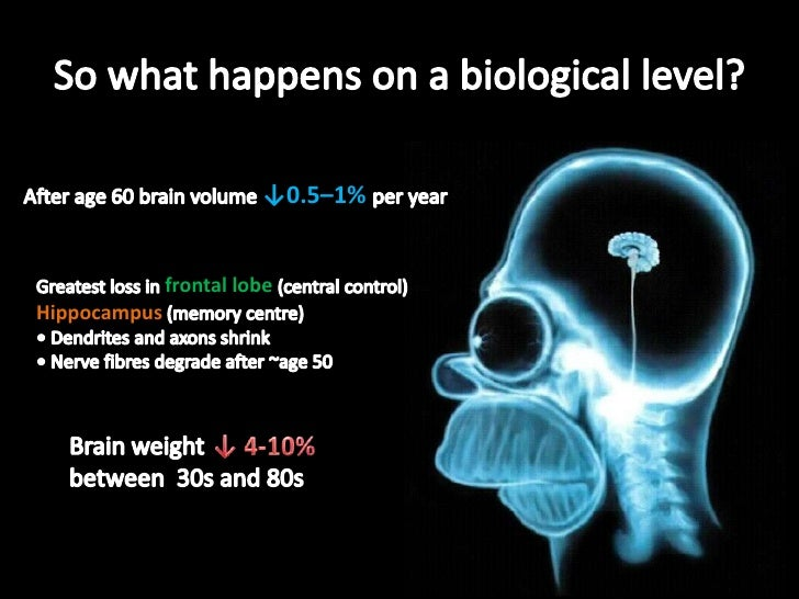 So what happens on a biological level?<br />After age 60 brain volume ↓0.5–1% per year<br />Greatest loss in frontal lobe ...