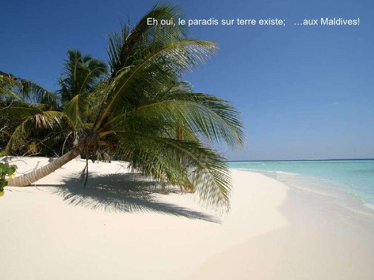 Eh oui, le paradis sur terre existe;  …aux Maldives!