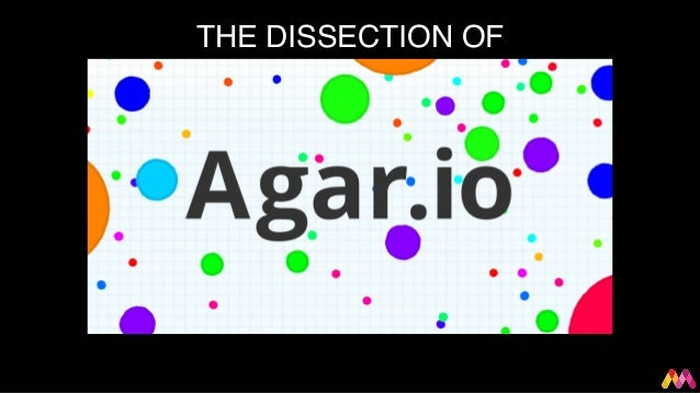 THEDISSECTIONOF