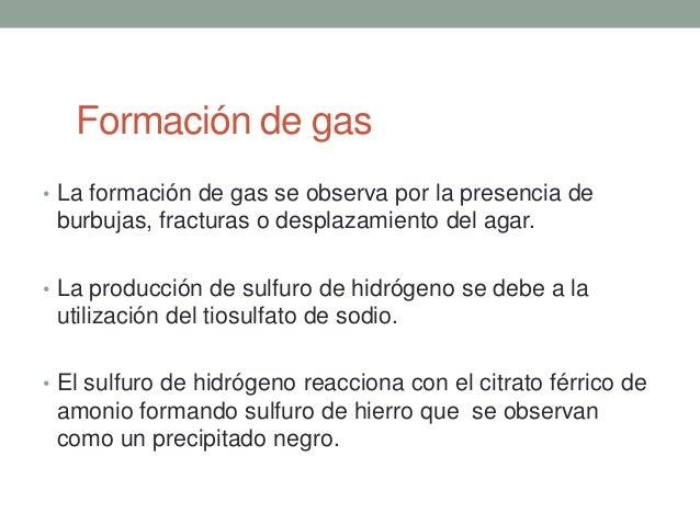 Formación de gas• La formación de gas se observa por la presencia de burbujas, fracturas o desplazamiento del agar.• La pr...
