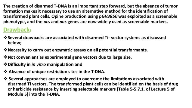 The creation of disarmed T-DNA is an important step forward, but the absence of tumor formation makes it necessary to use ...