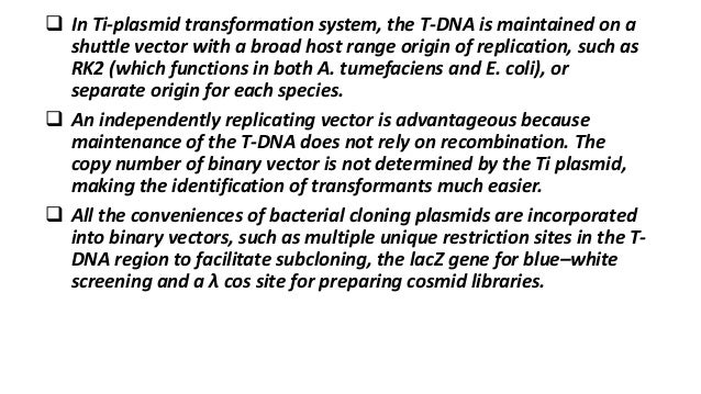  In Ti-plasmid transformation system, the T-DNA is maintained on a shuttle vector with a broad host range origin of repli...