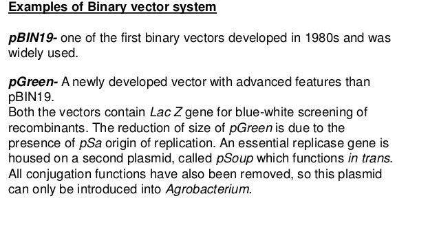 Examples of Binary vector system pBIN19- one of the first binary vectors developed in 1980s and was widely used. pGreen- A...
