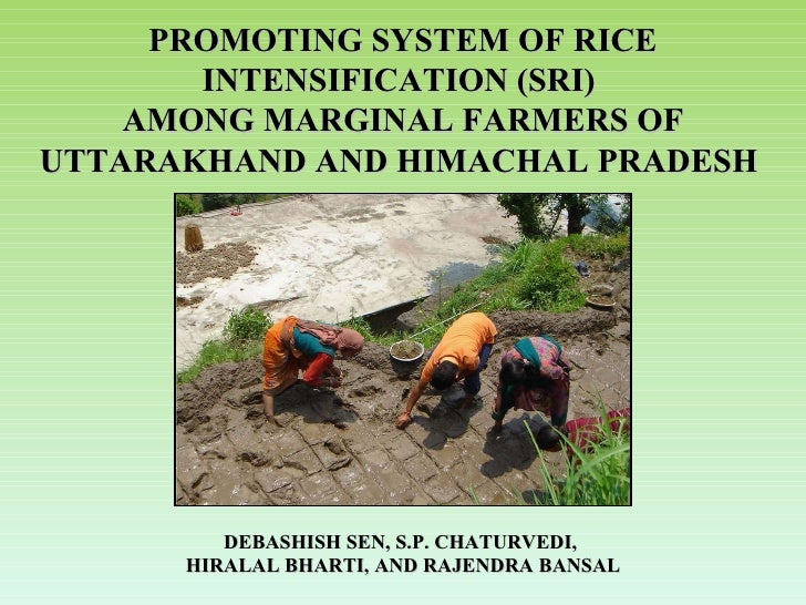 PROMOTING SYSTEM OF RICE INTENSIFICATION (SRI)  AMONG MARGINAL FARMERS OF UTTARAKHAND AND HIMACHAL PRADESH   DEBASHISH SEN...