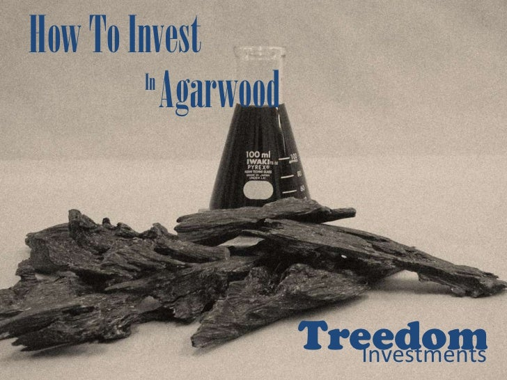 How To Invest        In           Agarwood                      Treedom                         Investments