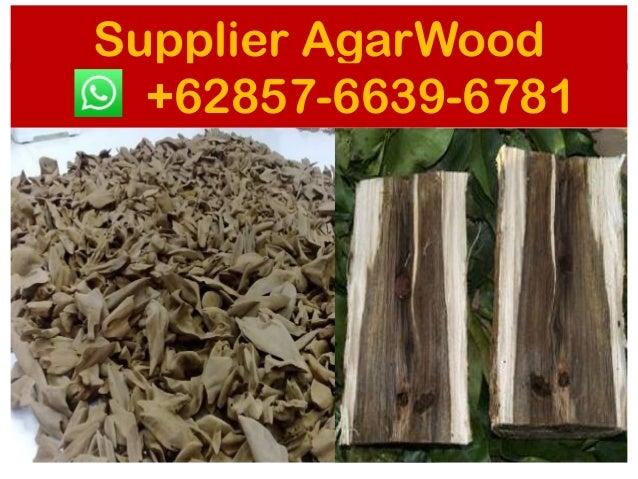 Agarwood market price , SUPPLIERS +62 857-6639-6781 ( WhatsApp), Agar…