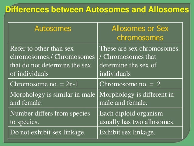 autosomes and sex chromosomes pptp in Wodonga