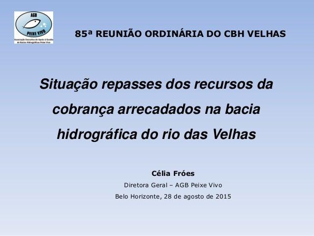 Situação repasses dos recursos da cobrança arrecadados na bacia hidrográfica do rio das Velhas Célia Fróes Diretora Geral ...