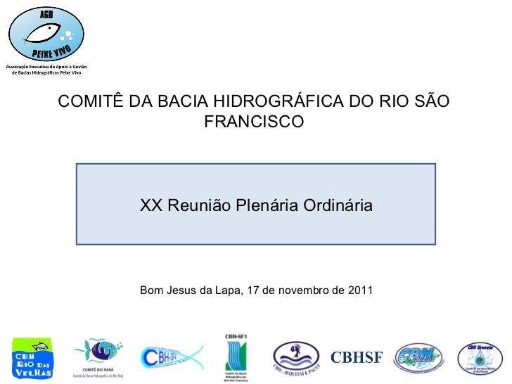 COMITÊ DA BACIA HIDROGRÁFICA DO RIO SÃO FRANCISCO Bom Jesus da Lapa, 17 de novembro de 2011 XX Reunião Plenária Ordinária