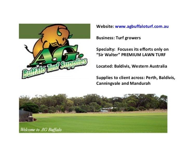 "Website:  www.agbuffaloturf.com.au Business: Turf growers Specialty:  Focuses its efforts only on "" Sir Walter"" PREMIUM LA..."