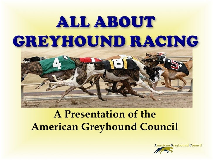 A Presentation of the American Greyhound Council