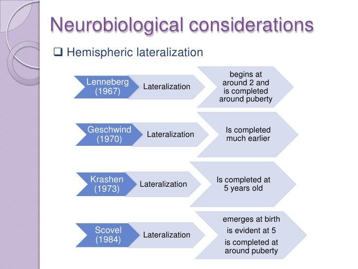 Neurobiological considerations Hemispheric lateralization                                        begins at      Lenneberg...