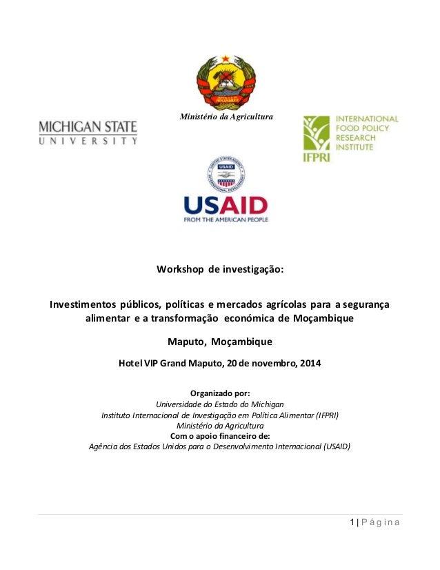 1 | P á g i n a Workshop de investigação: Investimentos públicos, políticas e mercados agrícolas para a segurança alimenta...