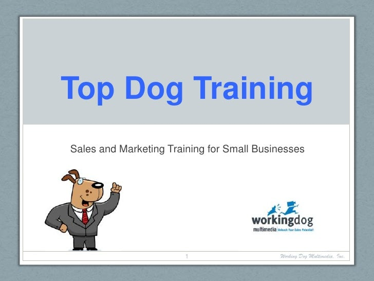 Top Dog Training<br />Sales and Marketing Training for Small Businesses<br />Working Dog Multimedia, Inc.<br />1<br />