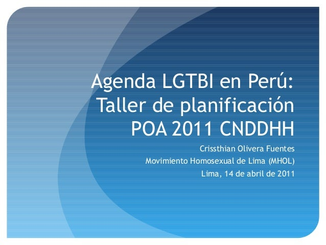 Agenda LGTBI en Perú: Taller de planificación POA 2011 CNDDHH Crissthian Olivera Fuentes Movimiento Homosexual de Lima (MH...