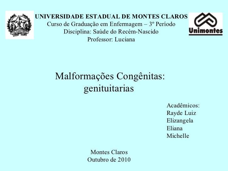 UNIVERSIDADE ESTADUAL DE MONTES CLAROS Curso de Graduação em Enfermagem – 3º Período Disciplina: Saúde do Recém-Nascido Pr...