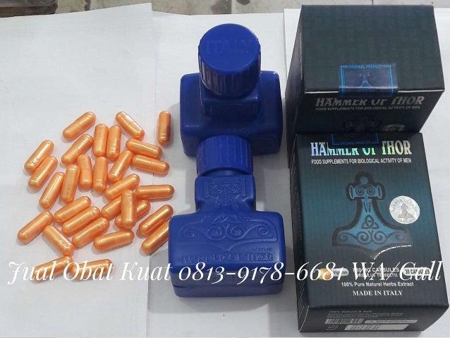 0813 9178 6681 wa call tsel jual obat kuat pria rx24 forex hercules h