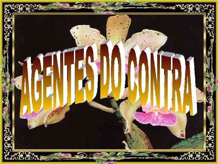 AGENTES DO CONTRA
