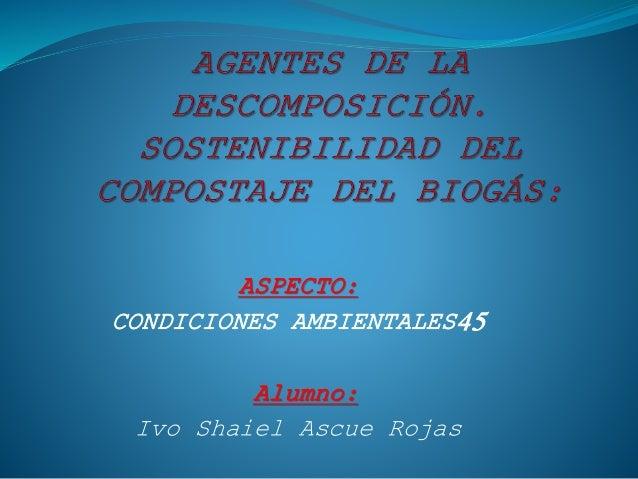 ASPECTO: CONDICIONES AMBIENTALES45 Alumno: Ivo Shaiel Ascue Rojas
