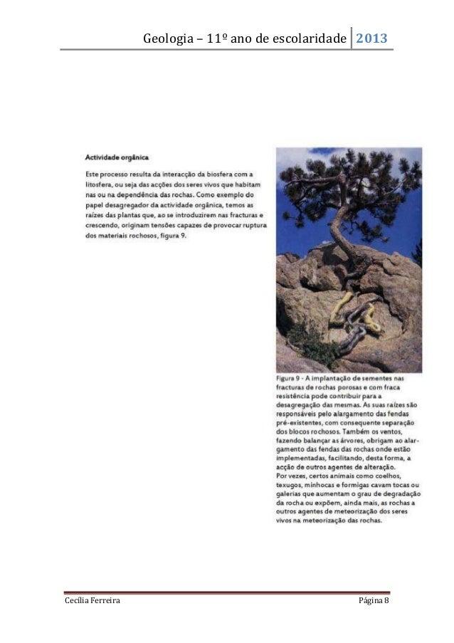 Geologia – 11º ano de escolaridade 2013Cecília Ferreira Página 8