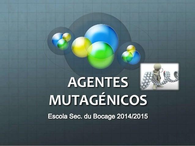 AGENTES MUTAGÉNICOS Escola Sec. du Bocage 2014/2015
