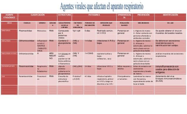 AGENTE ETIOLÓGICO VIRUS  CLASIFICACIÓN  FAMILIA  GÉNERO  ESTRUCTURA  PATOGENIA  GENOM A  CARACTERÍSTIC AS DE LA CÁPSIDE  F...