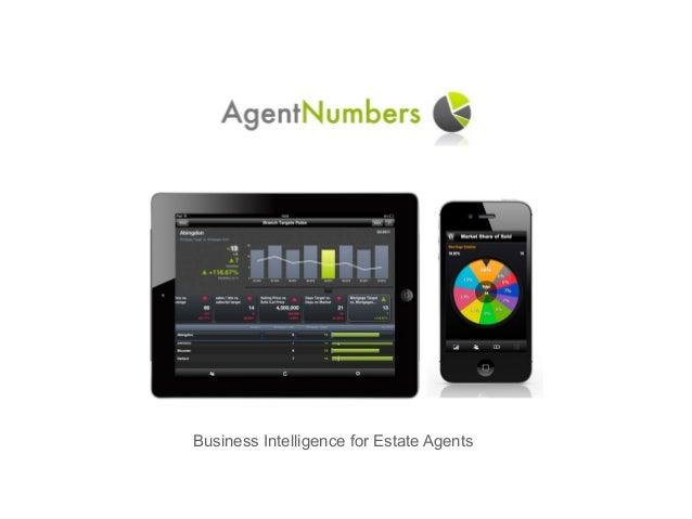 Business Intelligence for Estate Agents