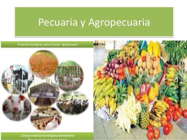 Pecuaria y Agropecuaria