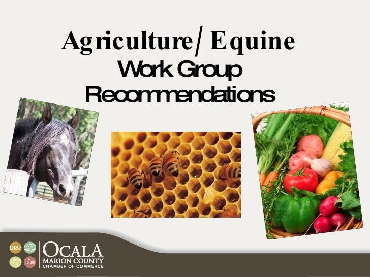 Agriculture/Equine Work Group Recommendations