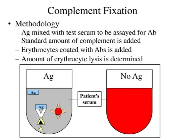 Complement serum activity by lysing sheep erythrocytes