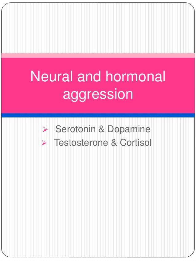 Aggression psychology