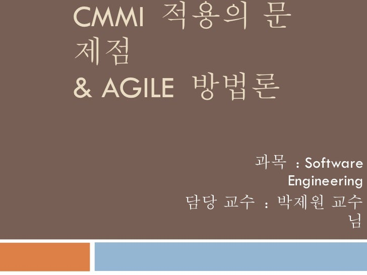 CMMI  적용의 문제점 & AGILE  방법론 과목  : Software Engineering 담당 교수  :  박제원 교수님