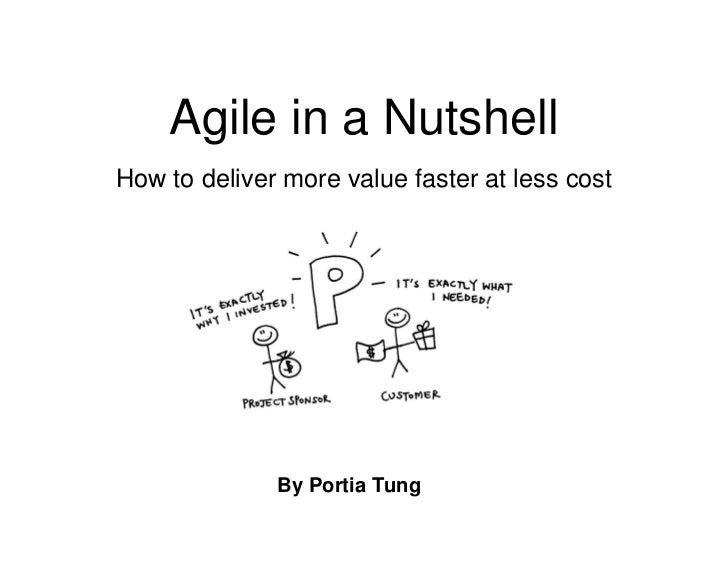 Agile in a NutshellHow to deliver more value faster at less cost              By Portia Tung