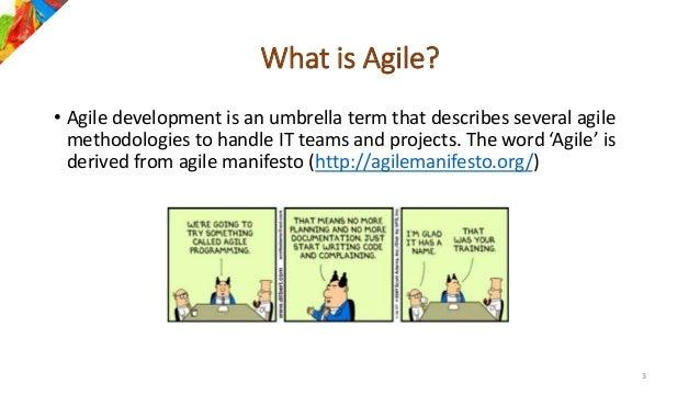 Agile-overview: Agile Manifesto, Agile principles and Agile Methodolo…