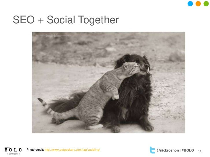 SEO + Social Together  Photo credit: http://www.petgeekery.com/tag/cuddling/   @nickroshon | #BOLO   12
