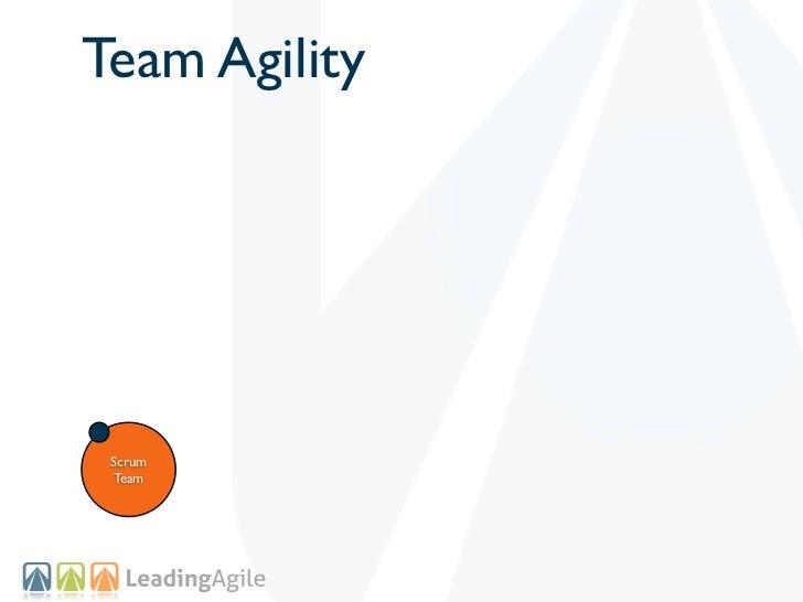 Team Agility Scrum Team