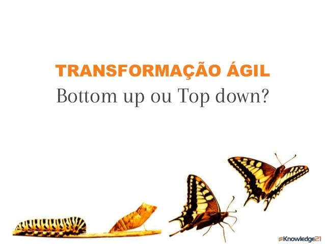 TRANSFORMAÇÃO ÁGIL Bottom up ou Top down?