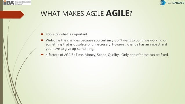WHAT MAKES AGILE AGILE?  Focus on what is important.  Welcome the changes because you certainly don't want to continue w...